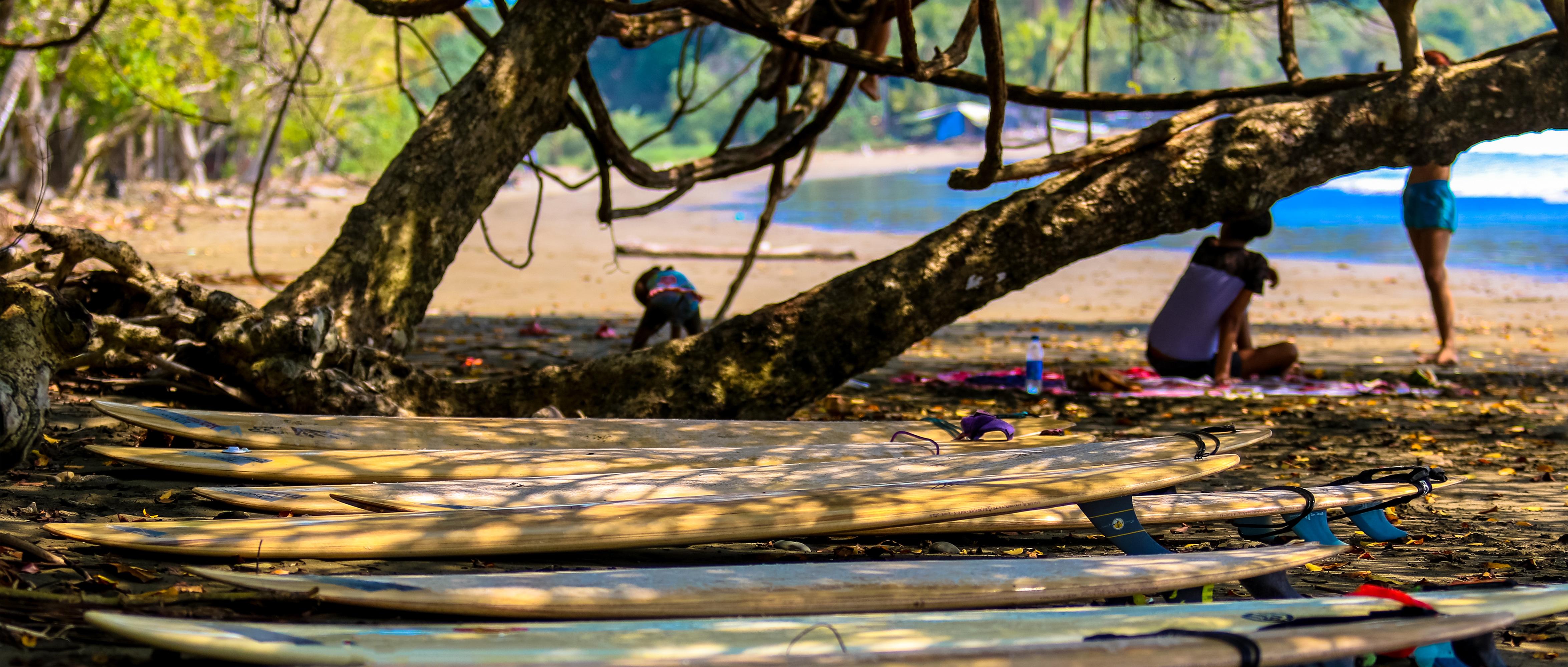 Surf Boards on the Beach: Altos de Miramar, Dominical, Osa Peninsula